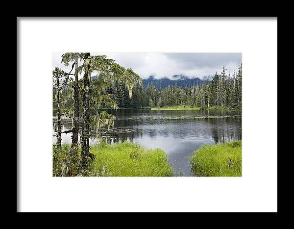 Mp Framed Print featuring the photograph Crane Lake, Tongass National Forest by Konrad Wothe