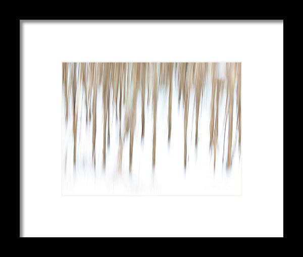 Abstract Framed Print featuring the photograph Crazy Corn by Rrrose Pix