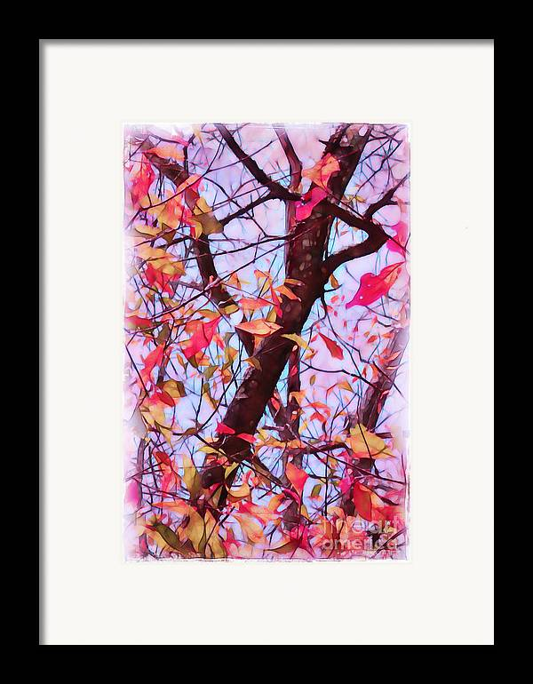 Fall Framed Print featuring the photograph Crisp Autumn Day by Judi Bagwell
