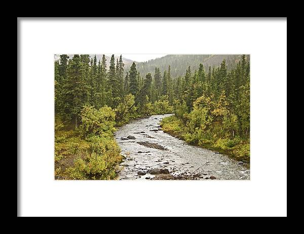 Landscape Framed Print featuring the photograph Crossing the Stream in Denali by Jim and Kim Shivers