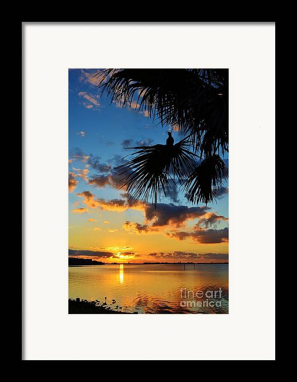 Sunrise Framed Print featuring the photograph Crow In The New Year by Lynda Dawson-Youngclaus