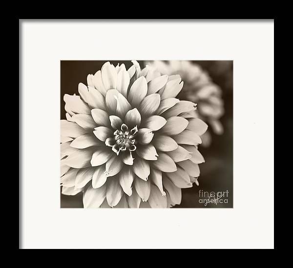 Daliha Framed Print featuring the digital art Daliha Dreams by Artist and Photographer Laura Wrede