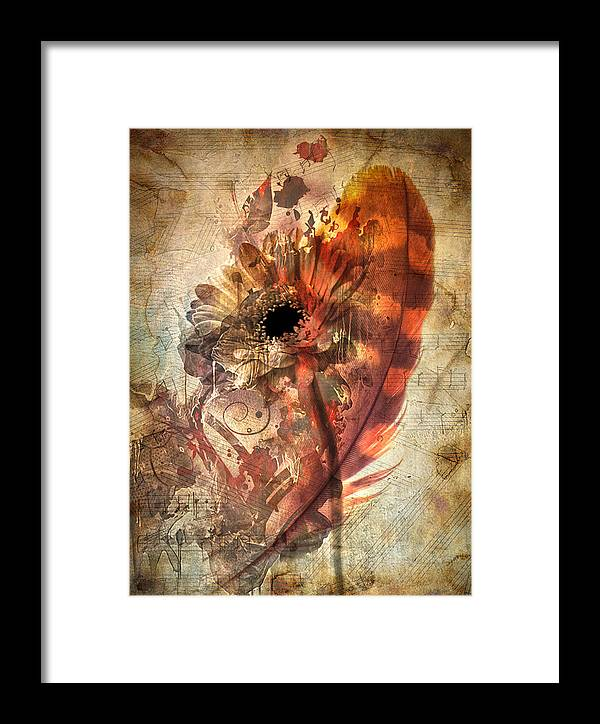 Feather Framed Print featuring the photograph Dancing Feather by The Artist Project
