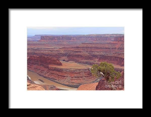 Dead Horse Point State Park Framed Print featuring the photograph Dead Horse Point State Park by Jack Schultz