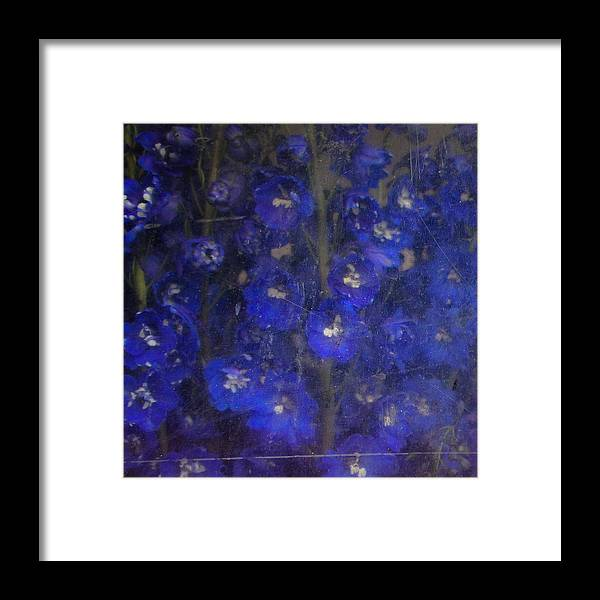 Old Masters Framed Print featuring the photograph Delft Blues by Lynn Wohlers
