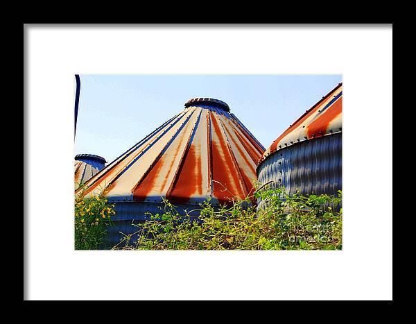 Landscape Framed Print featuring the photograph Derelict 4 by Melanie D Cervantes