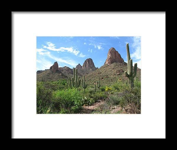 Desert Framed Print featuring the photograph Desert Beauty by Adrienne Lahr