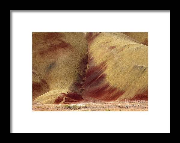 Painted Hills Framed Print featuring the photograph Desert Brushstrokes by Mike Dawson