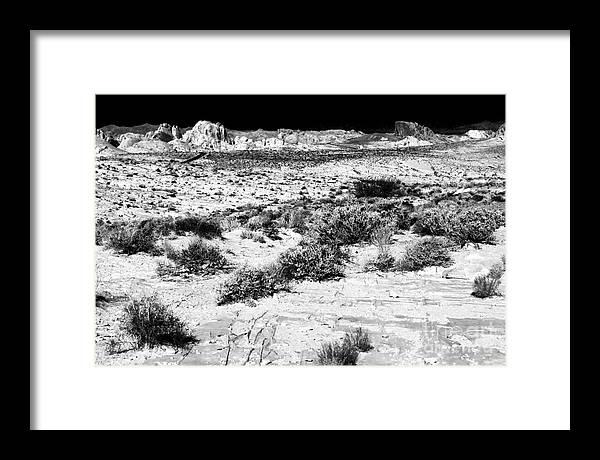 Desert Daze Framed Print featuring the photograph Desert Daze by John Rizzuto