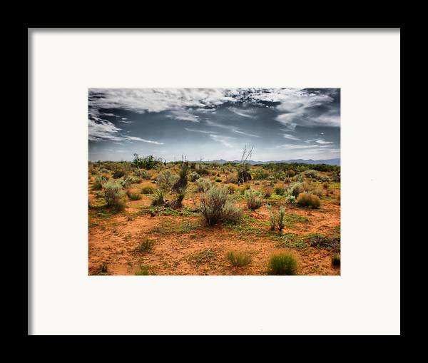 Desert Framed Print featuring the photograph Desert Of New Mexico by Thomas MacPherson Jr