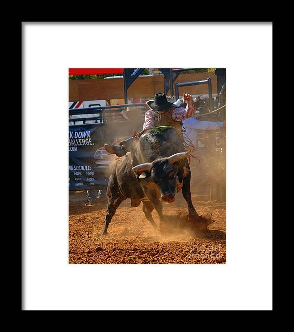 Cowboy Framed Print featuring the photograph Determination by Gib Martinez