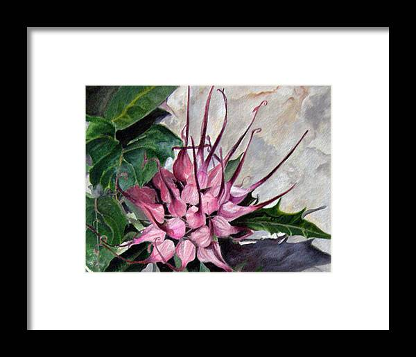 Flower Framed Print featuring the painting Devils Claw by Elaine VanWinkle