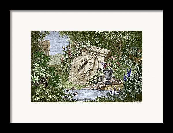 Dioscoridas Framed Print featuring the photograph Dioscorides, Ancient Greek Physician by Sheila Terry