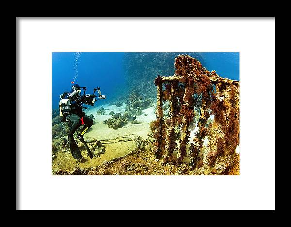 Underwater Framed Print featuring the photograph Diver Taking Photographs Underwater by Ria Novosti
