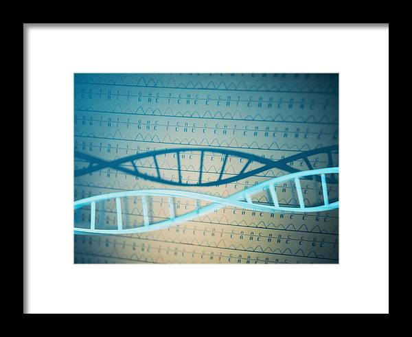 Double Helix Framed Print featuring the photograph Dna And A Genetic Sequence by Lawrence Lawry
