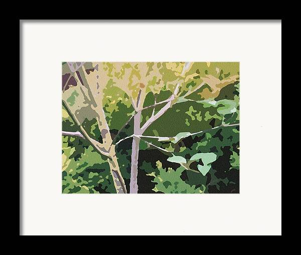 Dogwood Framed Print featuring the photograph Dogwood I by Katharine Birkett