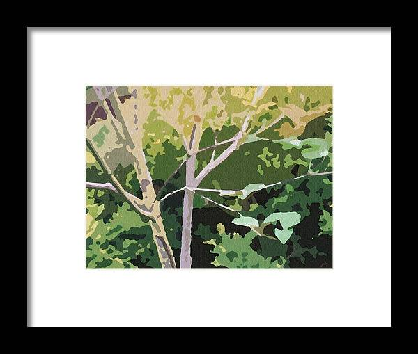 Dogwood Framed Print featuring the photograph Dogwood I by Katharine Birkett