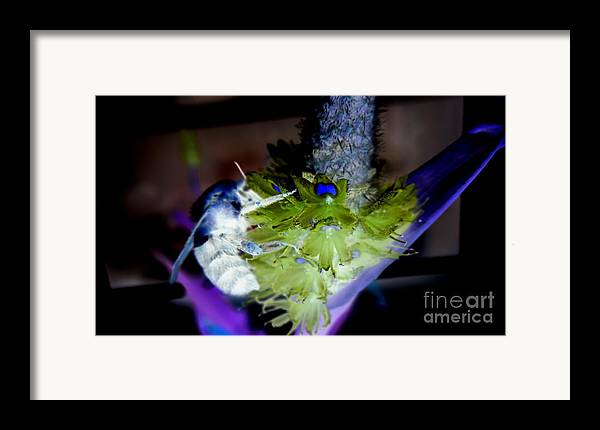 Bee Framed Print featuring the digital art Don't Bee Blue by Renee Trenholm