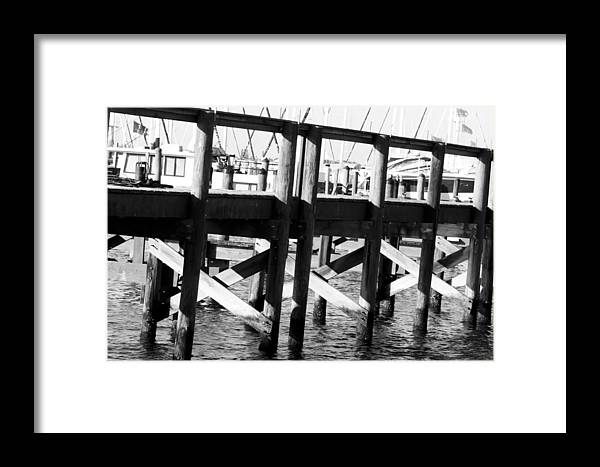 Palmetto Framed Print featuring the photograph Down By The Marina by Nicholas Evans