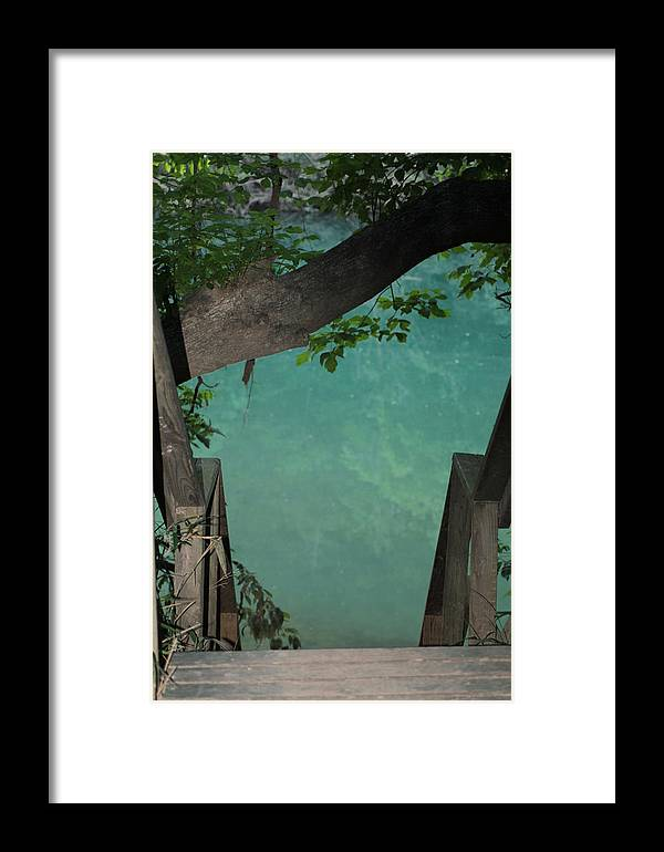Water Framed Print featuring the photograph Down To The Creek by Karen Wagner