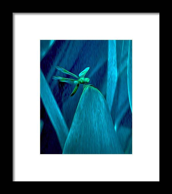 Dragonfly Framed Print featuring the photograph Dragonfly 2 by Jim Painter
