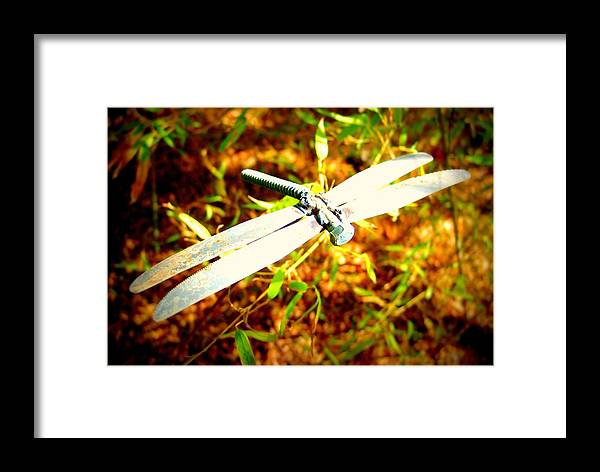 Dragonfly Framed Print featuring the photograph Dragonfly Droid by Megan Ford-Miller