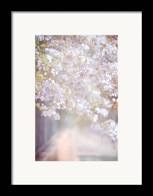 Jenny Rainbow Fine Art Photography Framed Print featuring the photograph Dreaming Of Spring by Jenny Rainbow