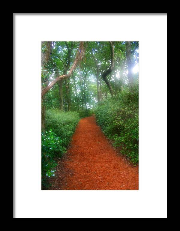 Garden Framed Print featuring the photograph Dreamy Garden Path by Cindy Haggerty