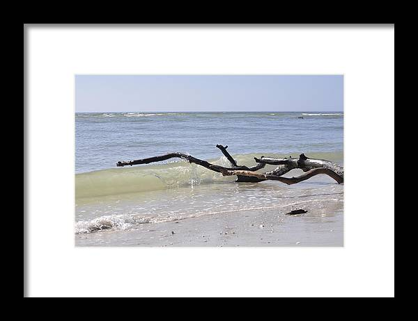 Driftwood Framed Print featuring the photograph Driftwood in the Surf by Christine Stonebridge