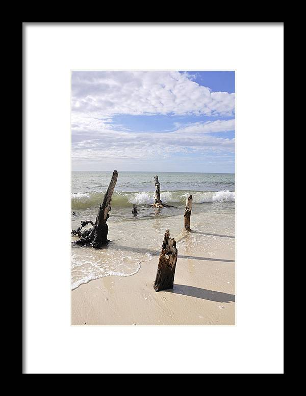 Driftwood Framed Print featuring the photograph Driftwood Stands Watch by Christine Stonebridge