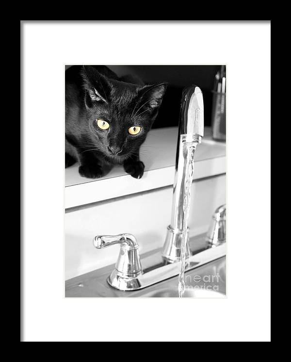 Art Framed Print featuring the photograph Drinking Problem by Jack Norton
