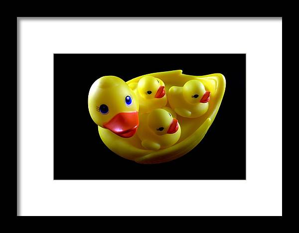 Toy Framed Print featuring the photograph Duck Family by Lynnette Johns