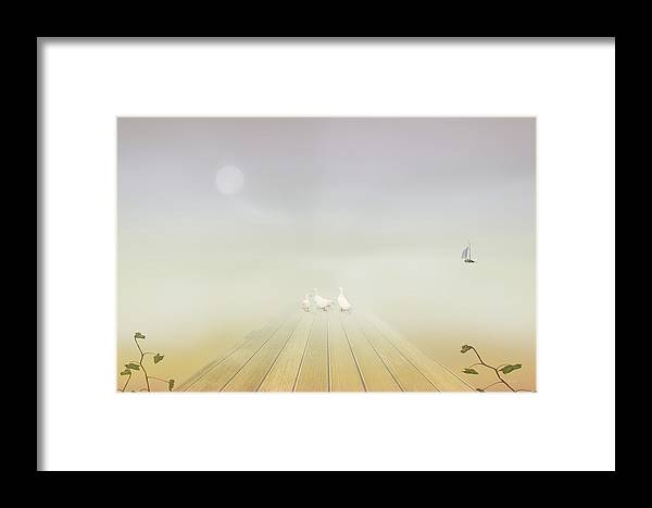 Nature Framed Print featuring the photograph Ducks On The Dock by Tom York Images