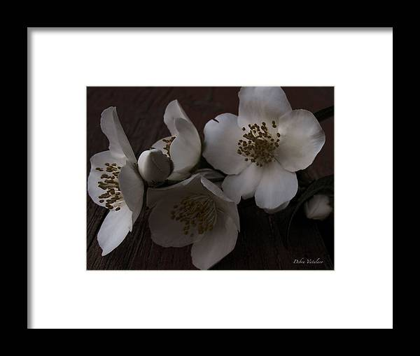 Dusk Blooms Framed Print featuring the photograph Dusk Blooms by Debra   Vatalaro