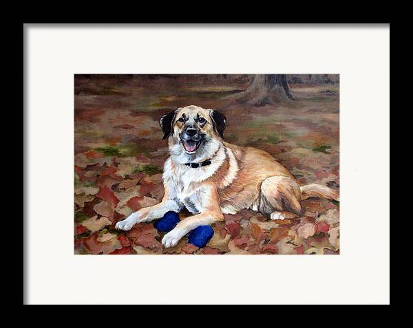 Dog Framed Print featuring the painting Dutch Shepherd by Sandra Chase