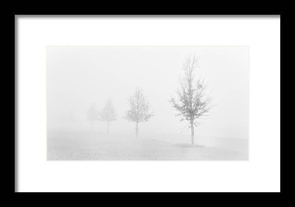 Fog Framed Print featuring the photograph Early Morning Fog by Mauricio Jimenez