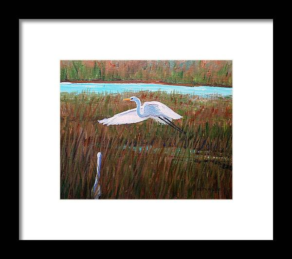 Egret Framed Print featuring the painting Egret Watching by Keith Wilkie
