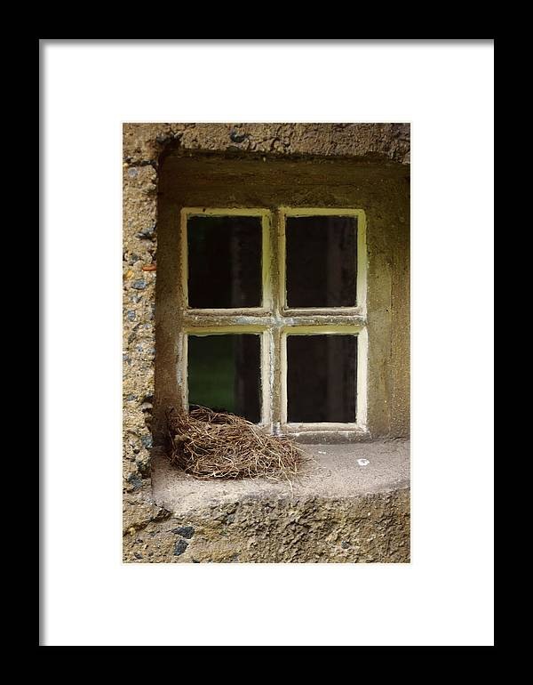 Window Framed Print featuring the photograph Empty Nest by Paul Slebodnick
