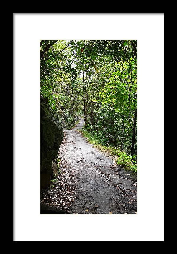 Path Framed Print featuring the photograph Enduring Path by Michael Carrothers