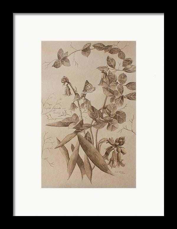Botanical Framed Print featuring the painting English Bluebells And Butterfly by Patsy Sharpe