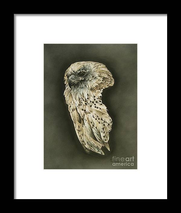 Wildlife Framed Print featuring the drawing Enigma by Jerry Lee