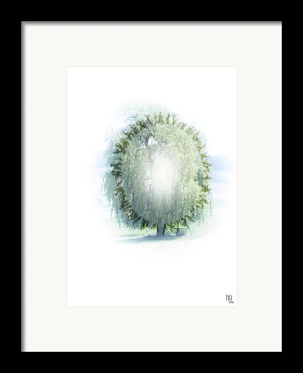 Enlightenment Framed Print featuring the digital art Enlightment Of The Willow by Nafets Nuarb