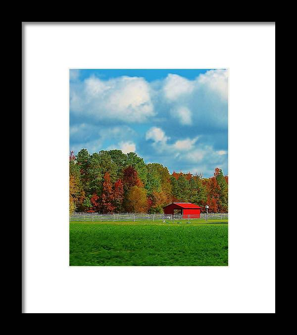 Fall Framed Print featuring the photograph Epitome Of American Beauty by Andrew Funk