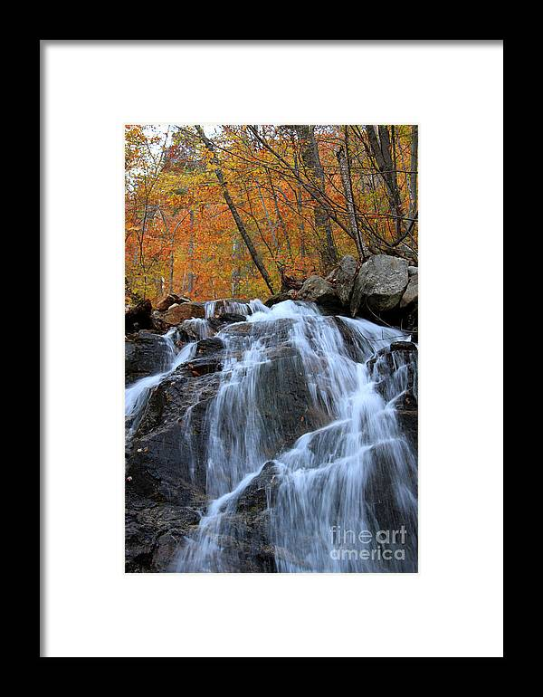 Fall Foliage Framed Print featuring the photograph Evans Notch Waterfall by Brenda Giasson
