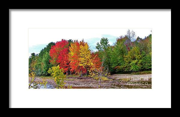Autumn Framed Print featuring the photograph Even Cloudy Days Sing In The Adirondacks 1 by Peggy Miller