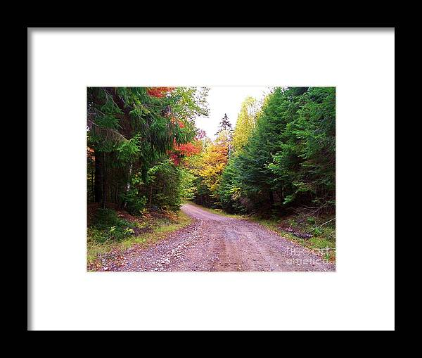 Autumn Framed Print featuring the photograph Even Cloudy Days Sing In The Adirondacks 10 by Peggy Miller