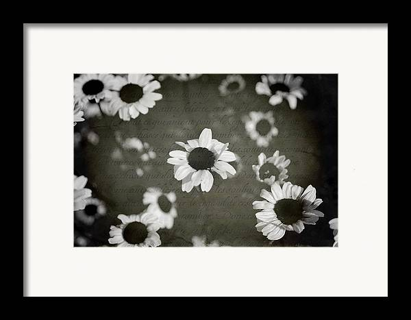 Flowers Framed Print featuring the photograph Even In Darker Days by Laurie Search