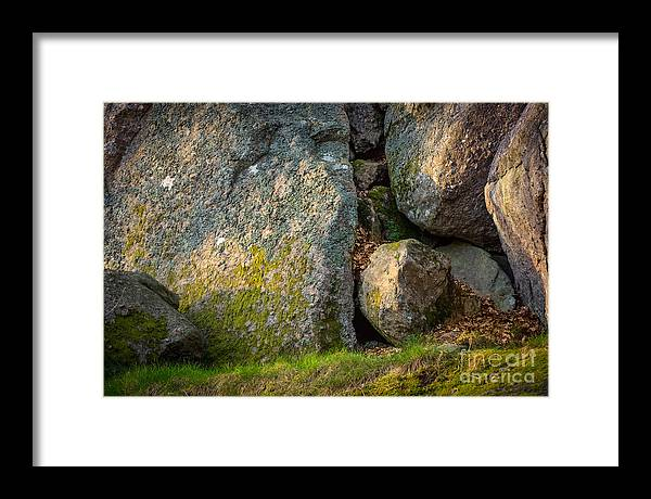 Forest Rocks Framed Print featuring the photograph Evening Sun Rocks by Lutz Baar