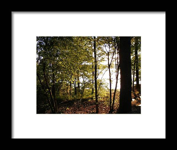 Framed Print featuring the photograph Evenings Warmth by Hickory Tree Productions