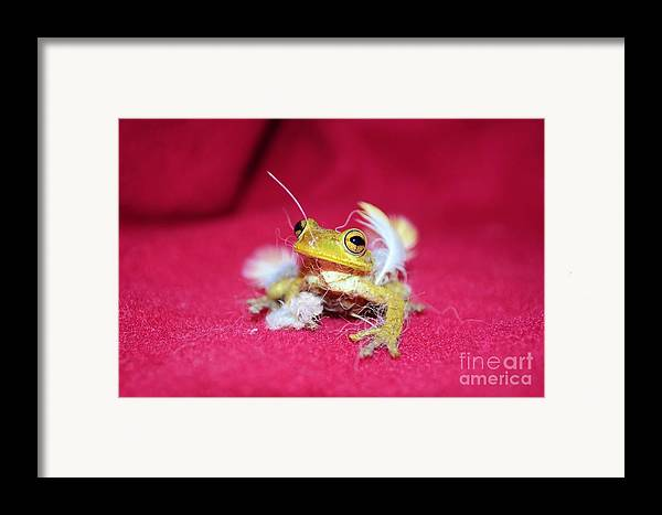 Frog Framed Print featuring the photograph Ever Have One Of Those Days by Lynda Dawson-Youngclaus